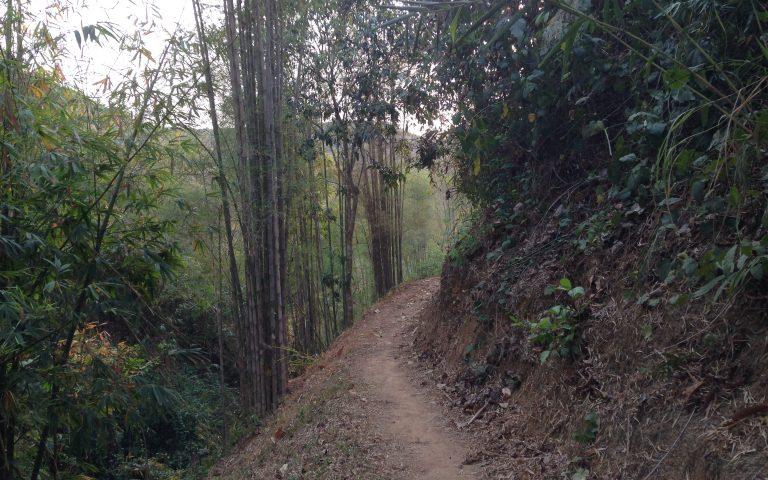 Дорога к колодцу
