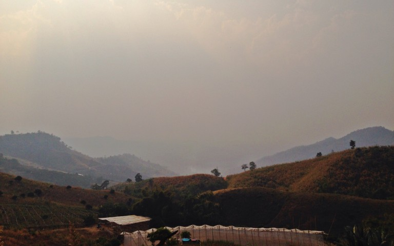 Lotos Viewpoint #3: мечта фермера
