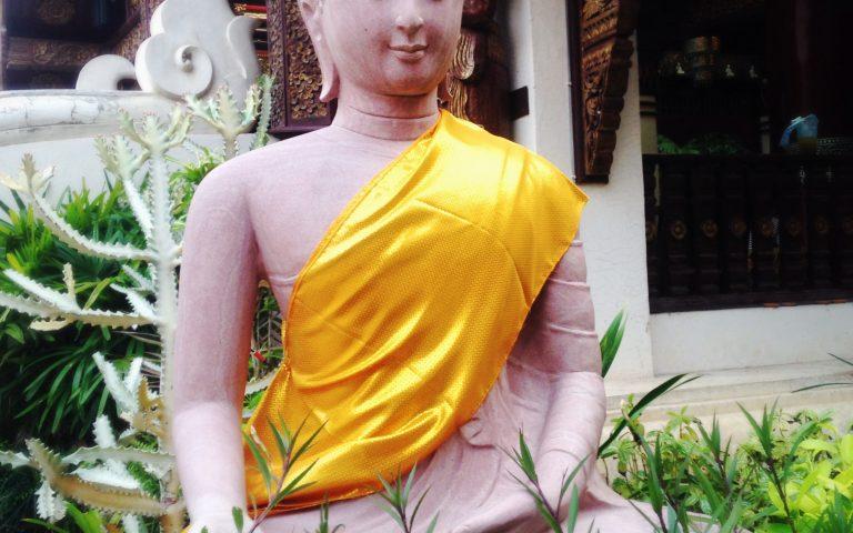 Будда в траве