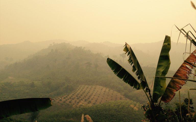 Таиланд в дымке 4