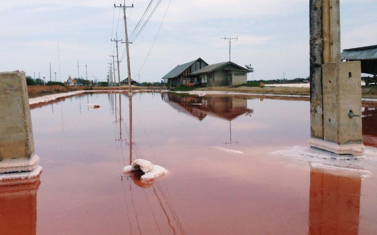 Красное море местного разлива