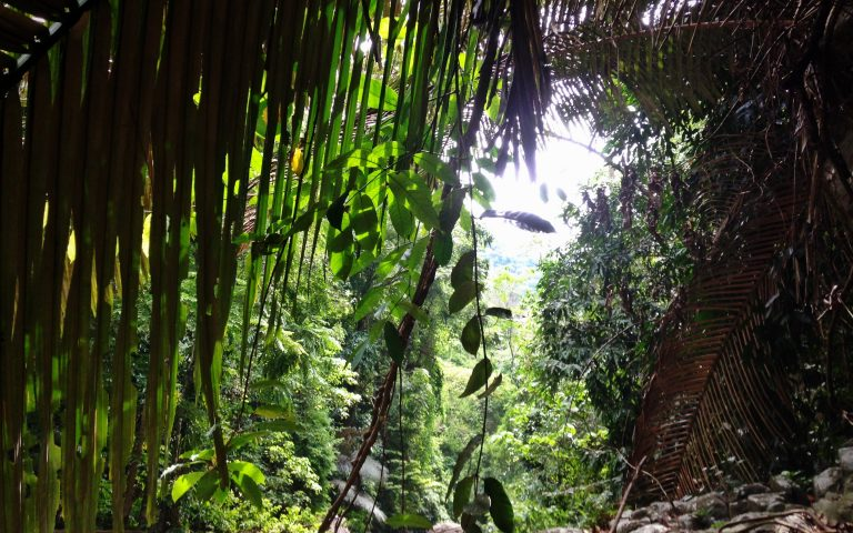 Дорога вдоль водопада Пала-У 3