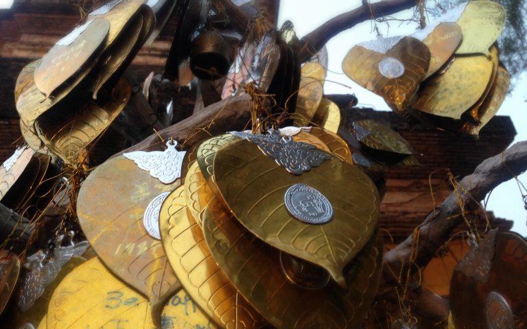 Золотые листья дерева бодхи