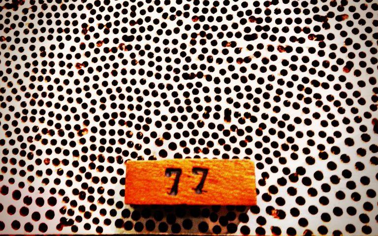 Цифра каждый вторник (77)