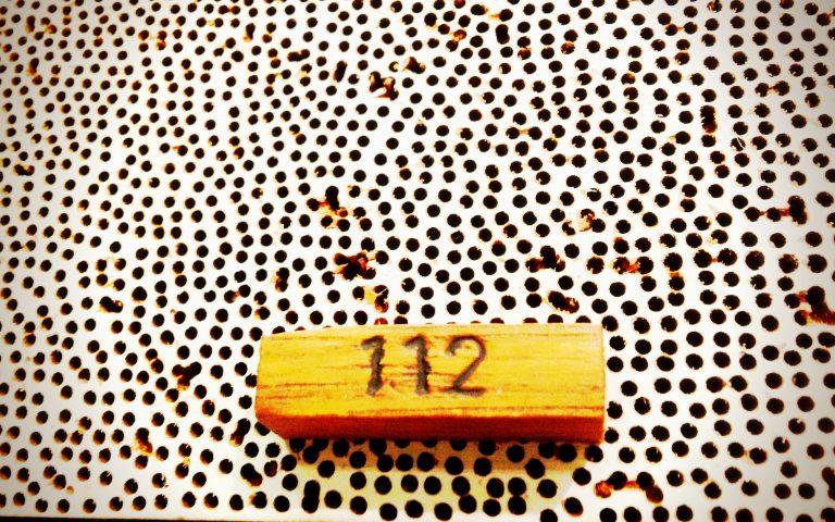 Цифра каждый вторник (112)