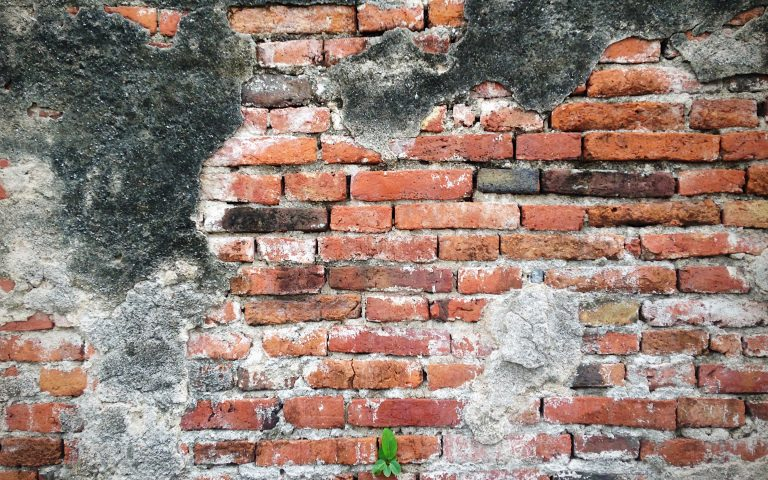 Проект «Бодхидхарма сидел». Стена №5