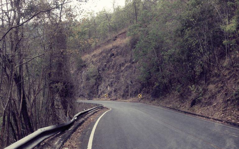 Дороги, по которым мы едем №53