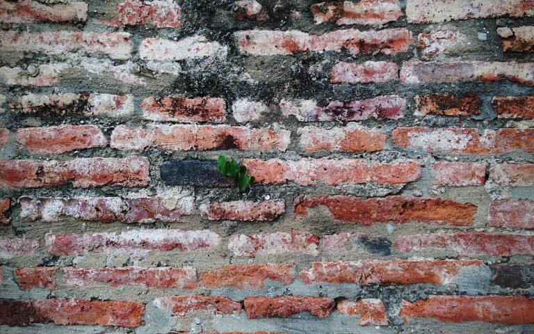 Проект «Бодхидхарма сидел». Стена №14