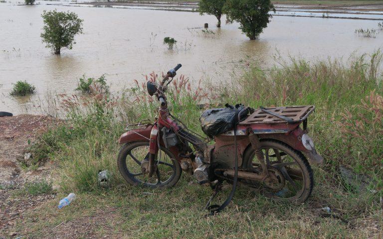 Рисовые поля и средство передвижения