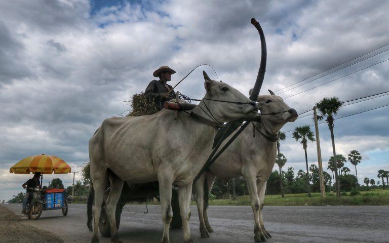 Мототрип по Камбодже завершен