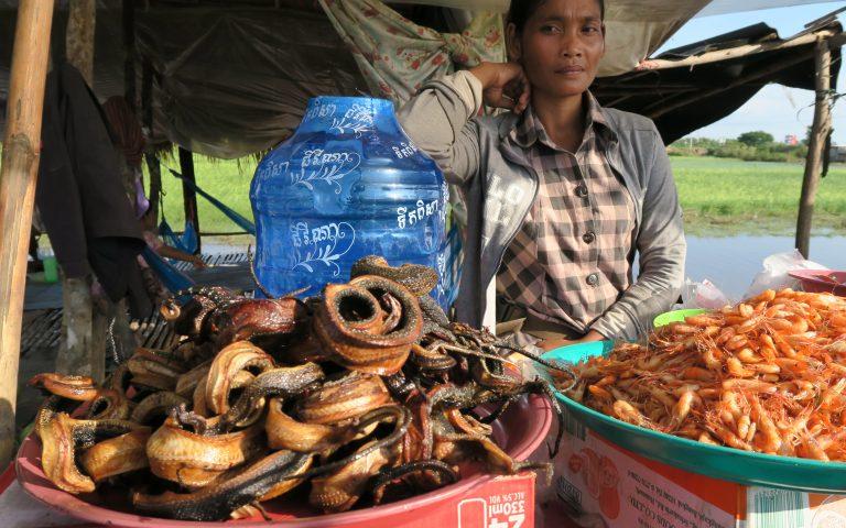 В Камбодже едят змей