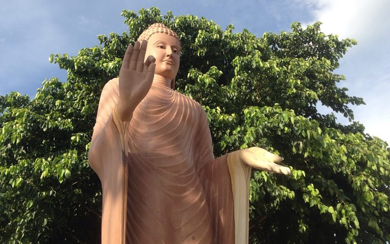 Будда на фоне дерева