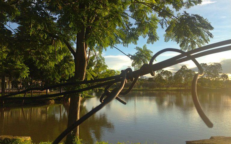 Парк Bueng Thung Sang 5