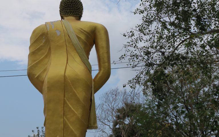 Обратная сторона Будды №23