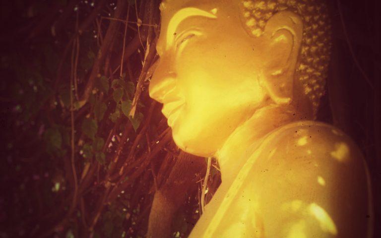 Будда под сенью бугенвиллеи