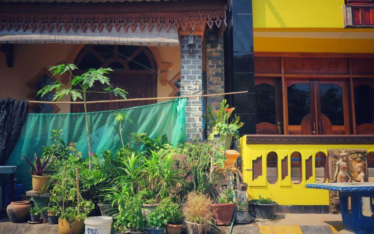 Городские сады Лаоса