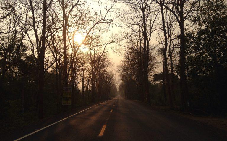 Дороги, по которым мы едем №76