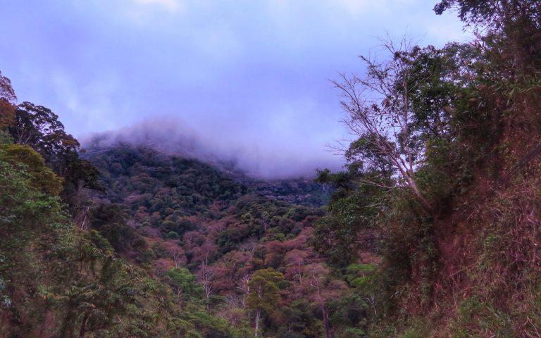 Горно-облачный Лаос