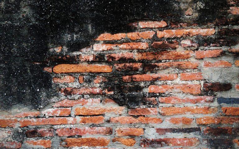 Проект «Бодхидхарма сидел». Стена №25