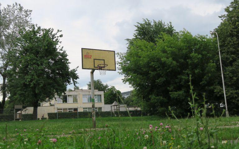 Баскетбол на живом покрытии