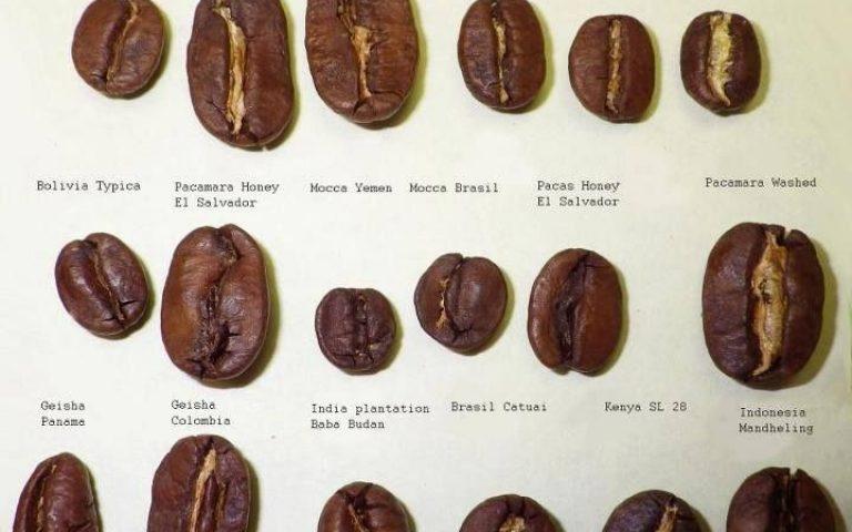 Кофе как модель