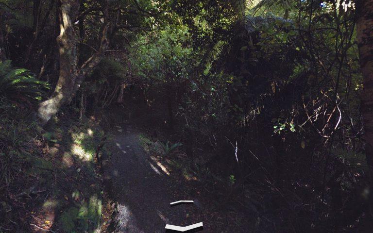 Как Гугл трекает лесные тропинки