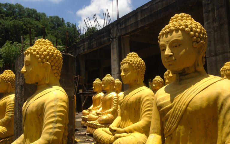 Будды многия 5
