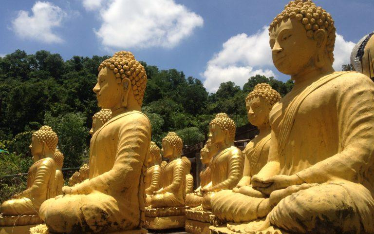 Будды многия 6