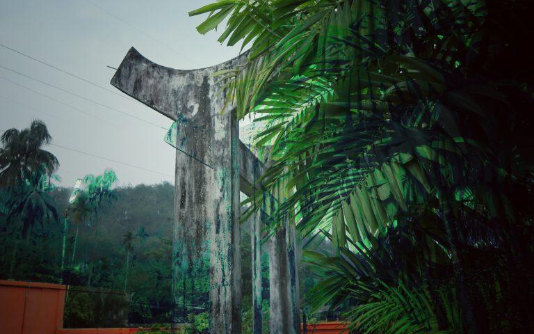 Архитектурное решение в джунглях