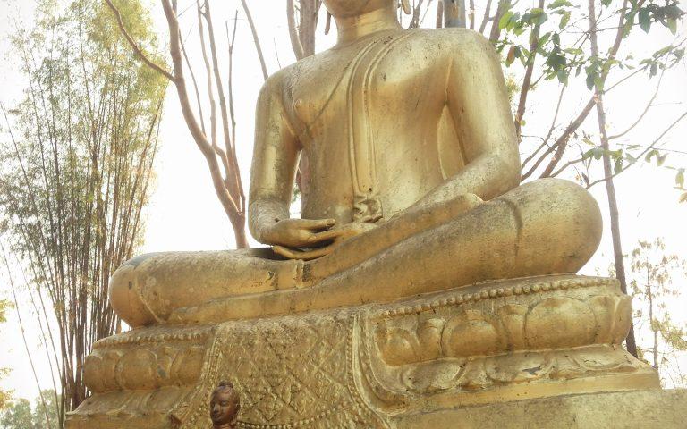 Будда под фонарём