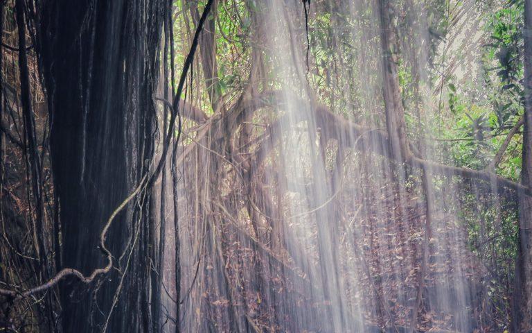 Место для медитации 3