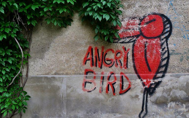 Граффити в Вильнюсе: Angry Bird