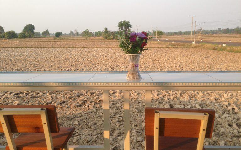 С видом на исанские рисовые поля