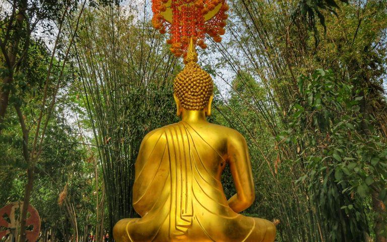 Обратная сторона Будды №35