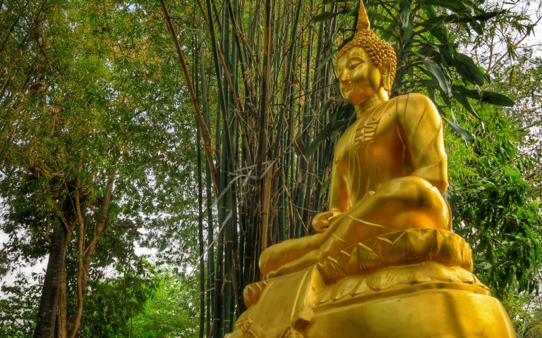 Будда в бамбуковой роще