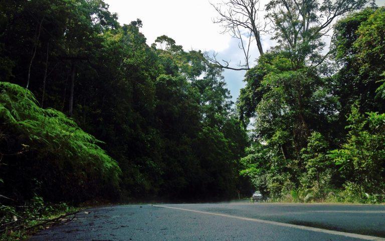 Дороги, по которым мы едем №91