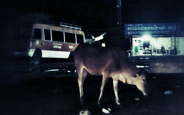 Полвосьмого в Лаосе 2