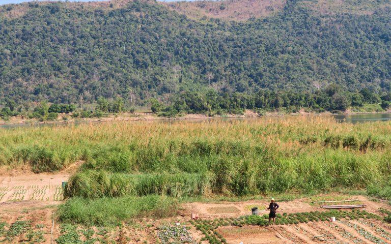 Фермер на берегу Меконга