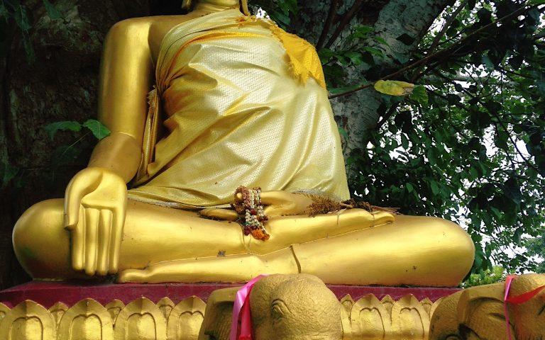 Будда и слоны