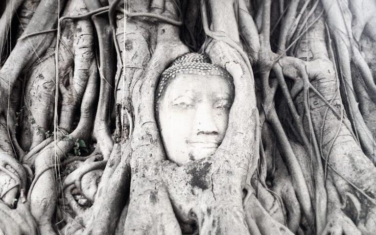 Будда лучший 2