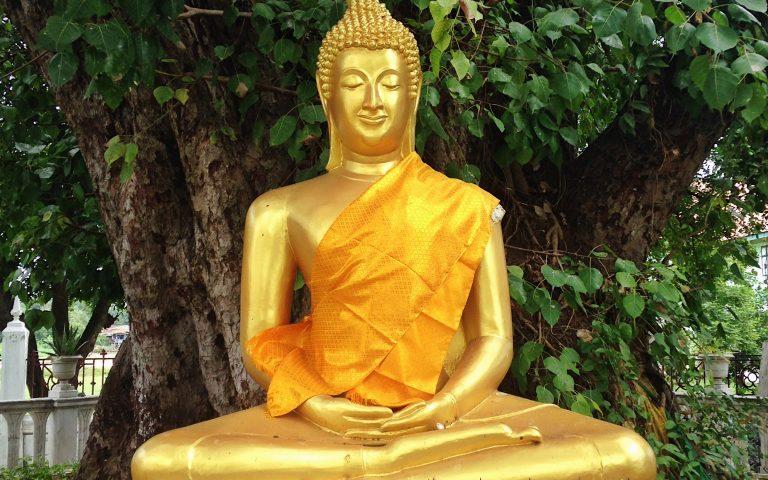 Будда под сенью